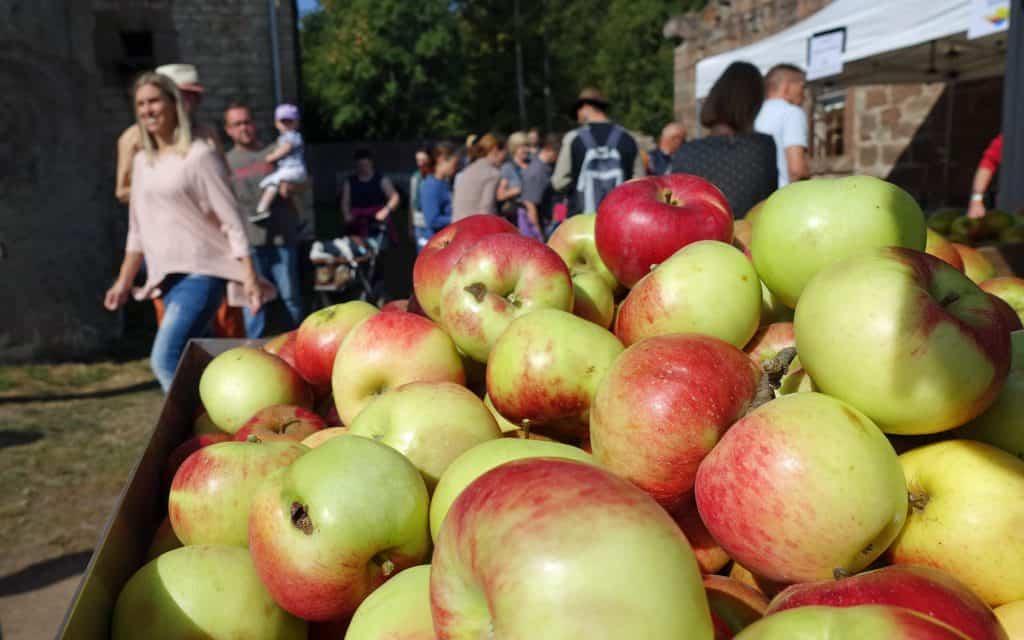 Regionalmarkt am 15. September